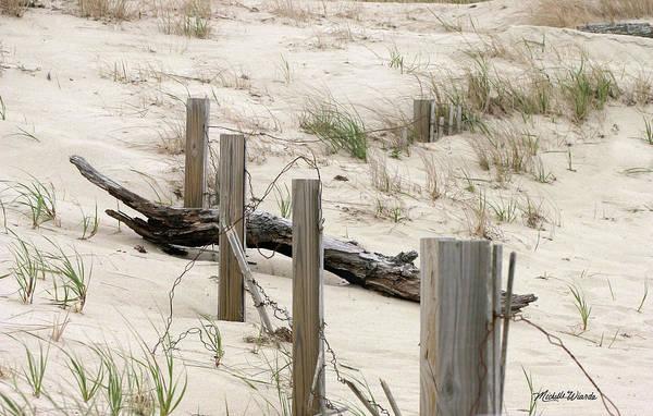 Windswept Beach Fence Cape Cod Massachusetts Poster