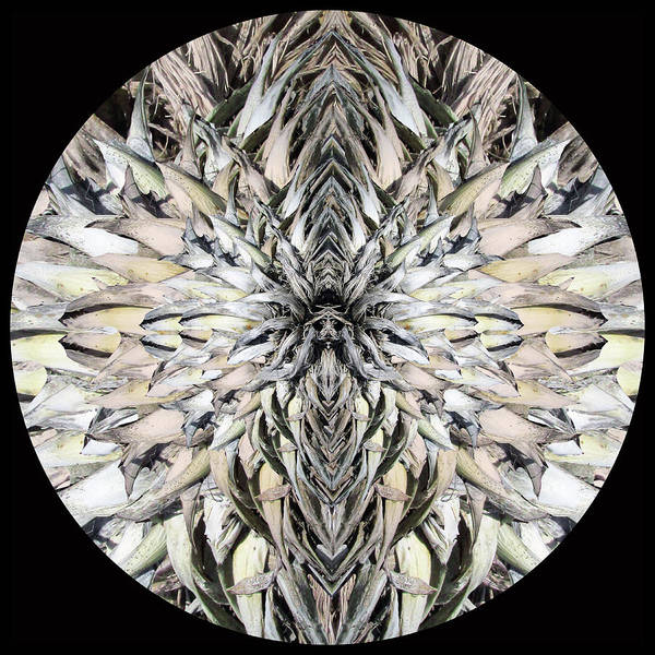 Winged Praying Figure Kaleidoscope Poster