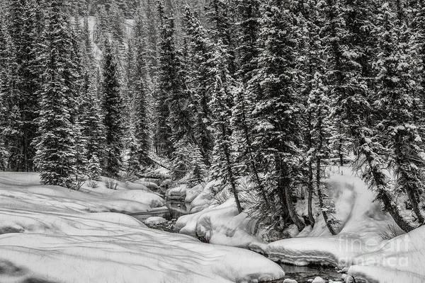 Winter Alpine Creek II Poster