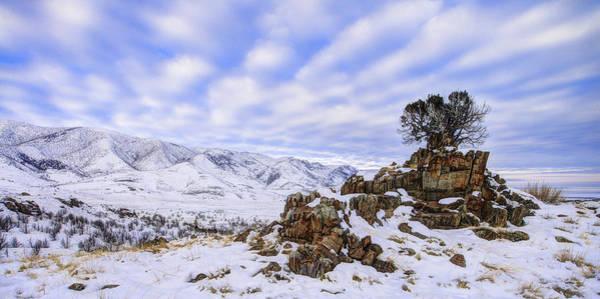 Winter Desert Poster