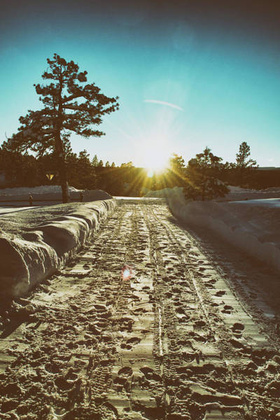 Winter Driveway Sunset Poster