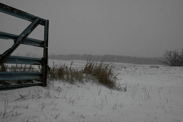 Poster featuring the photograph Winter Gate by Dylan Punke