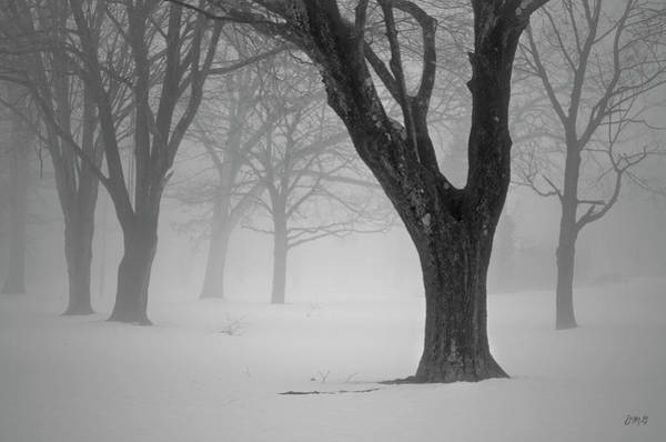Winter Landscape V Poster