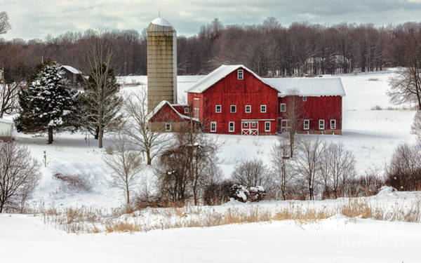 Winter On A Farm Poster