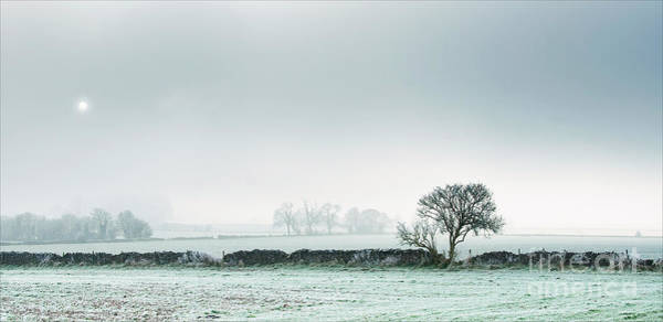 Winter On The Mendips Poster