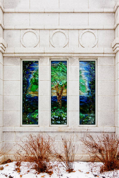 Winter Quarters Temple Tree Of Life Stained Glass Window Details Poster