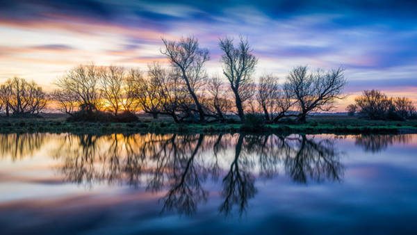 Winter Sunrise Over The Ouse Poster