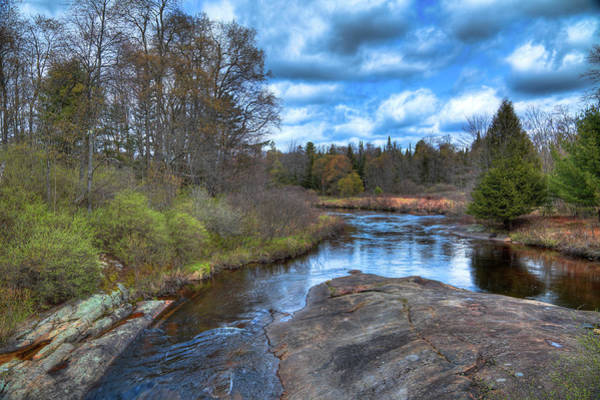 Woodhull Creek In May Poster
