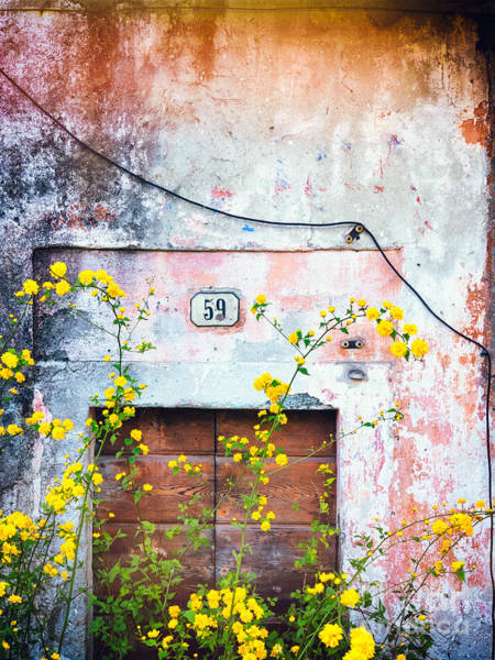 Yellow Flowers And Decayed Wall Poster