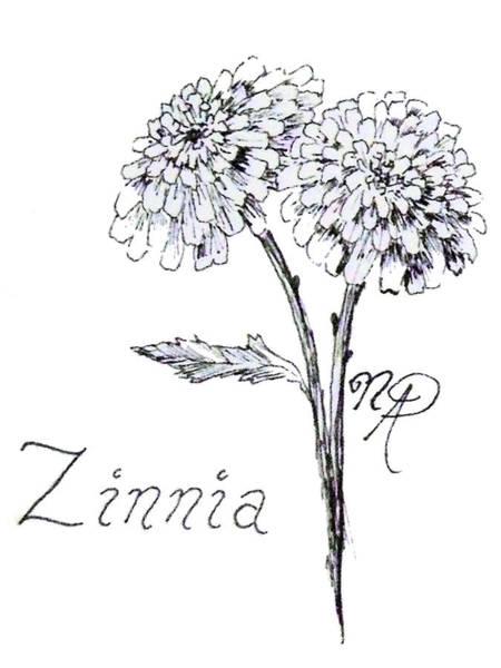 Zannie Zinnia Poster