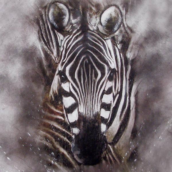 Zebra Splash Poster