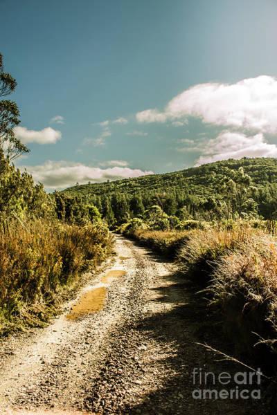 Zeehan Dirt Road Landscape Poster