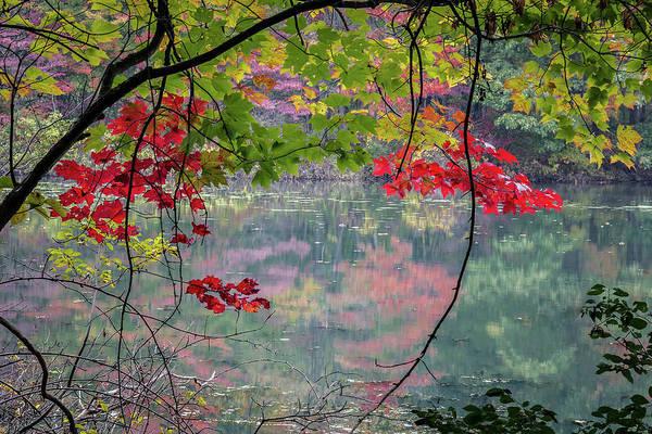 Autumn At Spirit Springs Poster