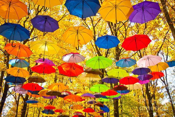 Autumn Umbrellas In The Sky Poster
