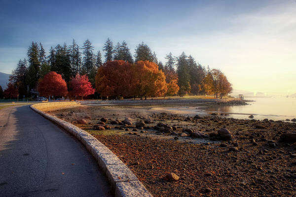 Colorful Autumn Foliage At Stanley Park Poster