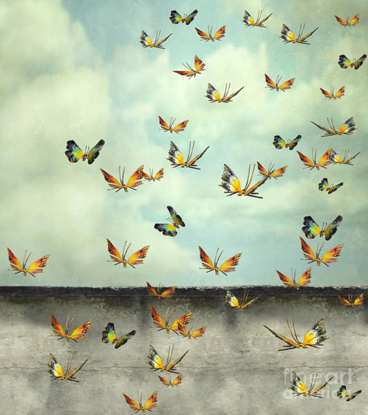 Many Colorful Butterflies Flying Into Poster