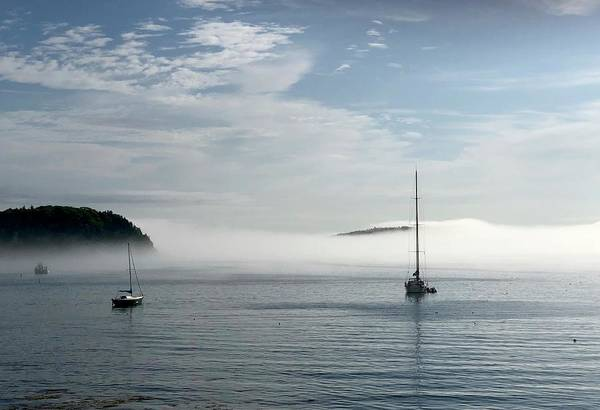 Morning Mist On Frenchman's Bay Poster