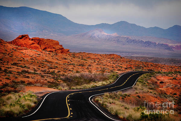 Winding Road In Valley Of Fire Poster