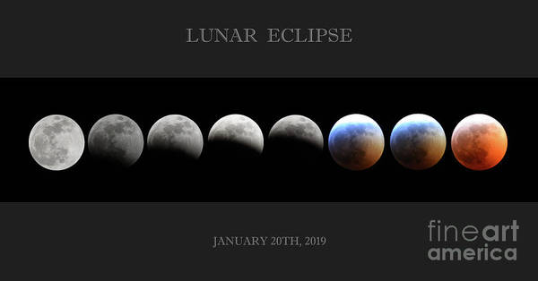Super Blood Wolf Moon Poster