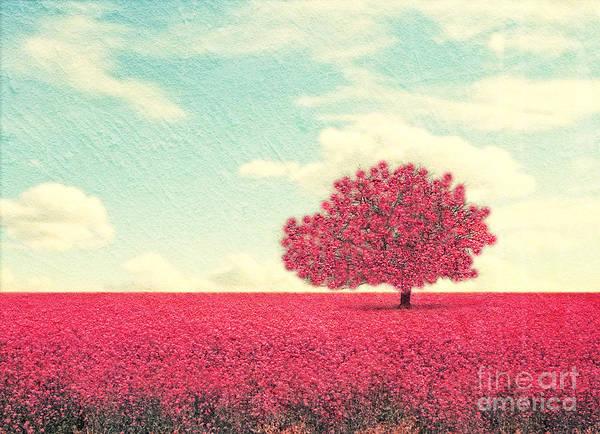 A Beautiful Tree In A Pretty Field Poster