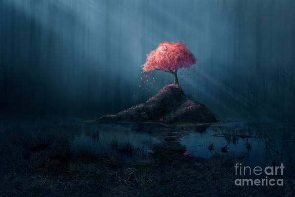 A Single Pink Tree In A Dark Blue Poster