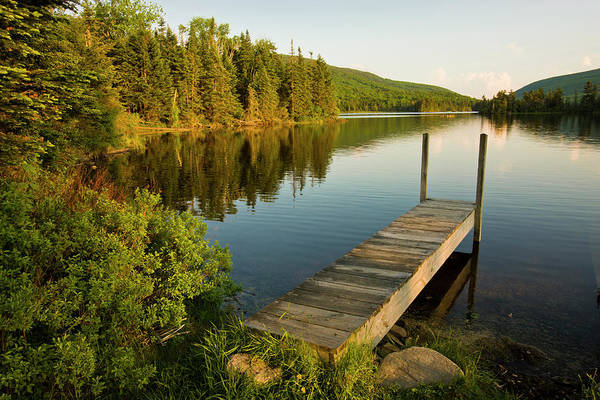 A Small Dock In Long Pond In White Poster