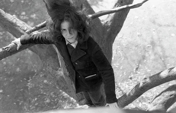 A Woman In A Tree, 1972 Poster