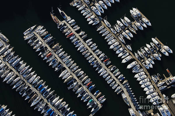 Aerial View Of Boats Lined Up On The Poster