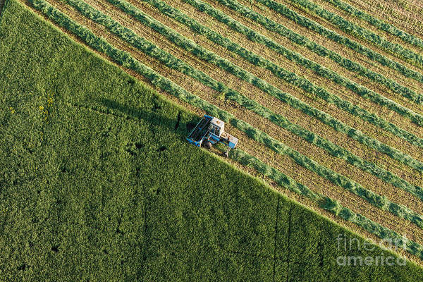 Aerial View Of Harvest Fields With Poster