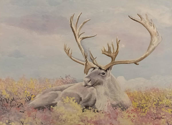 Alpine Ibex Poster