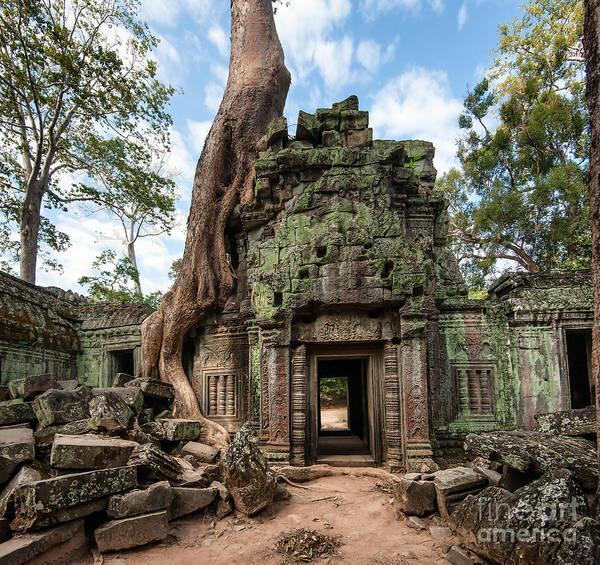 Angkor Wat Cambodia. Ta Prohm Khmer Poster