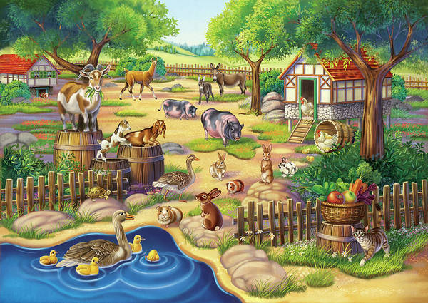 Animals At The Petting Zoo Poster