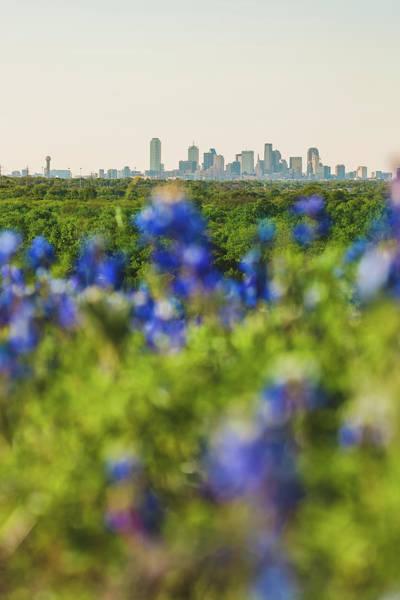 April In Dallas Poster