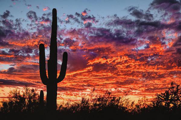 Poster featuring the photograph Arizona Sunset by Chance Kafka