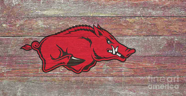 Arkansas Razorbacks Poster