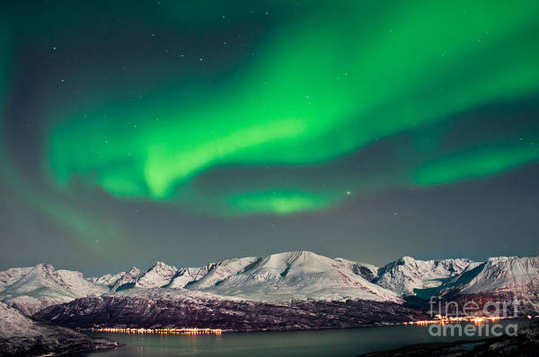 Aurora Above Fjords In Norway Poster
