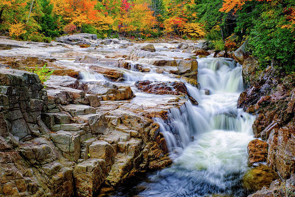 Autumn Color At Rocky Gorge Poster