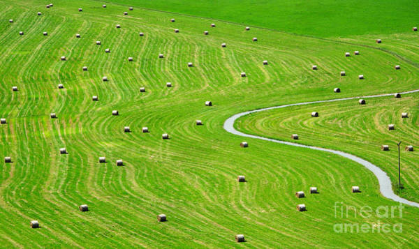 Bales Of Hay On Meadow. Aerial View On Poster