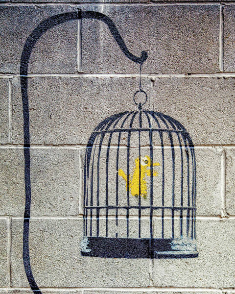 Poster featuring the photograph Banksy Bird Cage Detroit by Gigi Ebert