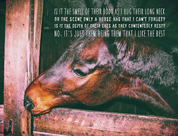 Barn Bay Quote Poster