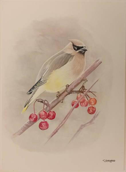 Beautiful Bird Poster