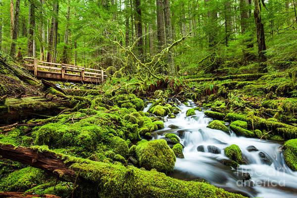 Beautiful Cascade Waterfall In Sol Duc Poster