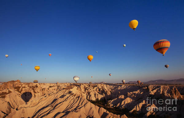 Beautiful Landscape With Hot Air Poster