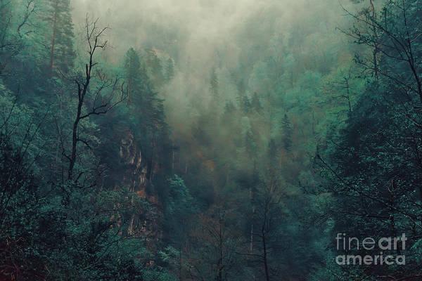 Beautiful Mystical Landscape. Fog In Poster
