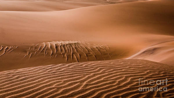 Beautiful Namib Desert 2 Poster