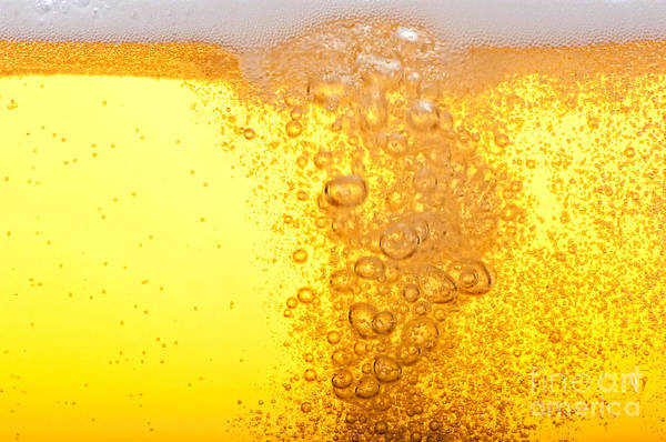 Beer Bubbles In The High Magnification Poster
