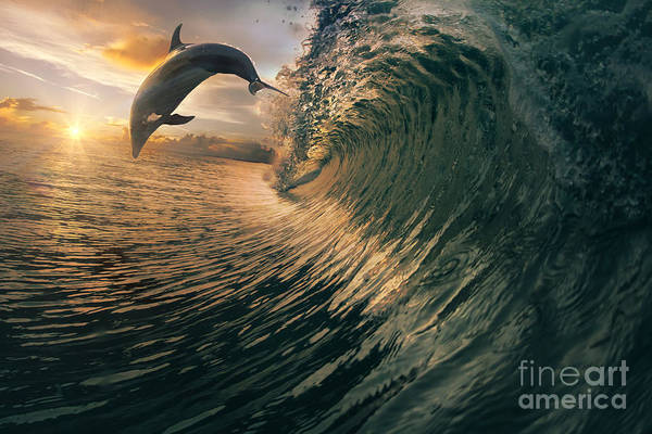 Big Ocean Breaking Wave And Sunset Poster