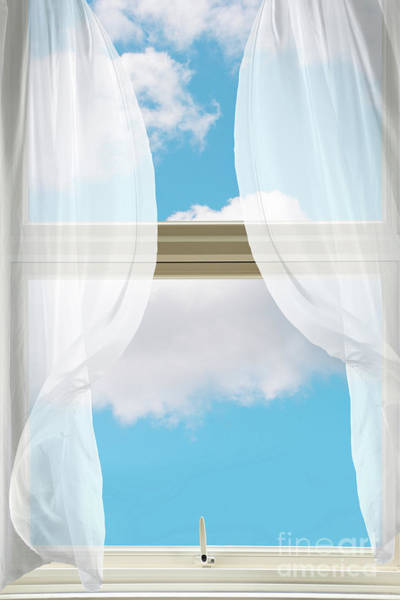Billowing Voile Curtains Poster