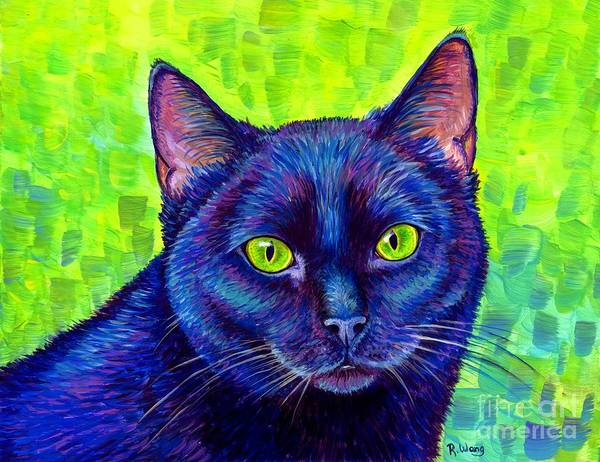 Black Cat With Chartreuse Eyes Poster