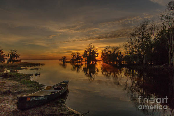 Poster featuring the photograph Blue Cypress Canoe by Tom Claud
